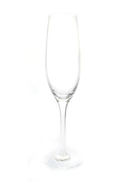 Ellite kpl. 6 kieliszków do szampana 200ml